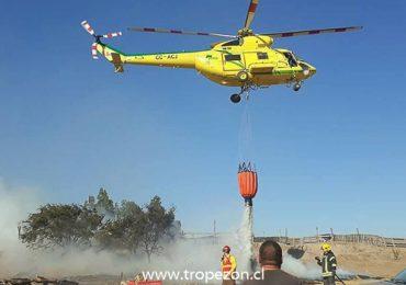 Incendio forestal afectó a la laguna Caren y al Noviciado en Pudahuel