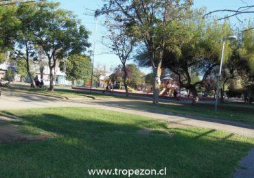 Millonario proyecto permitirá renovar todos los asientos de las plazas de Cerro Navia