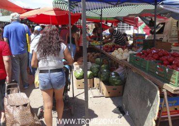 Ferias Libres de Pudahuel pretenden mantener atención tres veces por semana posterior a la pandemia