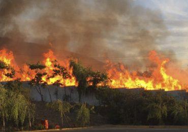 Alerta roja en Pudahuel por incendio forestal