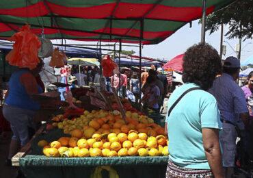 Pudahuel: Feria libres mantienen tres días de funcionamiento en etapa de transición