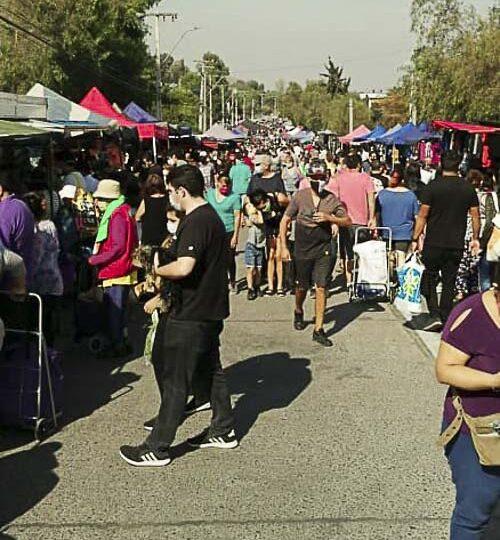 """Feria libre """"Falda de los Morros"""" fue trasladada de forma temporal en Pudahuel"""