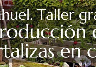"""Vecino impartirá segunda parte de taller Producción de Hortalizas en Casa"""" en Pudahuel"""