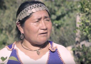 María Huenuñir, escritora y vecina: el Gobierno no ha logrado reconocer nuestros derechos y tradiciones