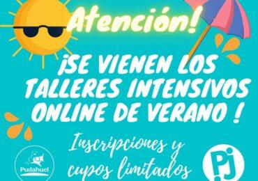 """""""Pudahuel Joven"""" anuncia realización de talleres de verano online y gratuitos"""