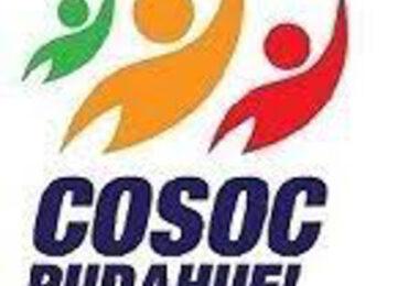 Asumen cuatro nuevos representantes del Consejo Comunal de Organizaciones de la Sociedad Civil en Pudahuel