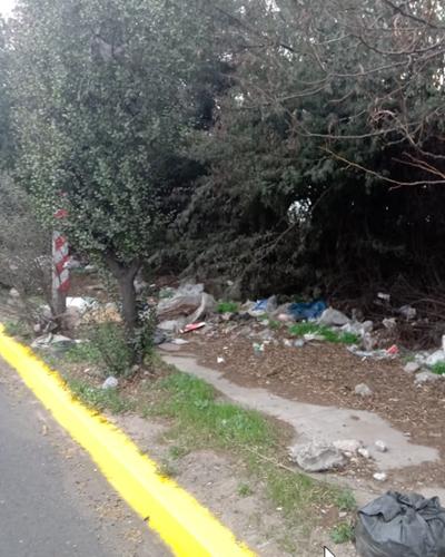 Tramo de vereda cubierto por matorrales y basura impide el paso de peatones en Pudahuel